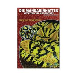 Die Mandarinnatter