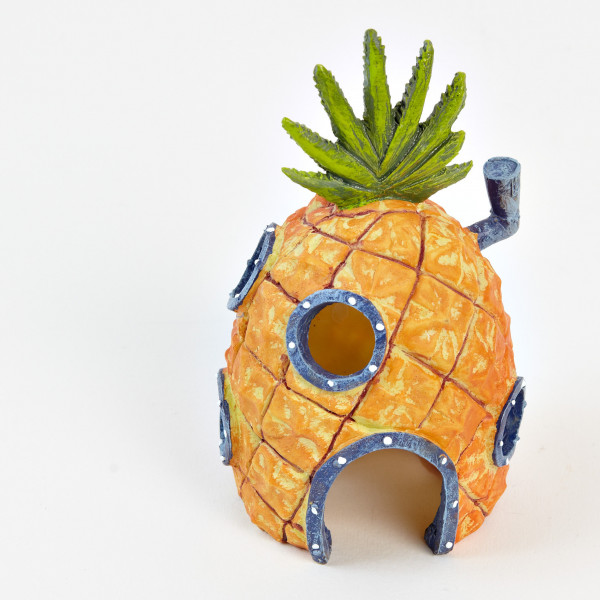 Spongebob Ananas Haus