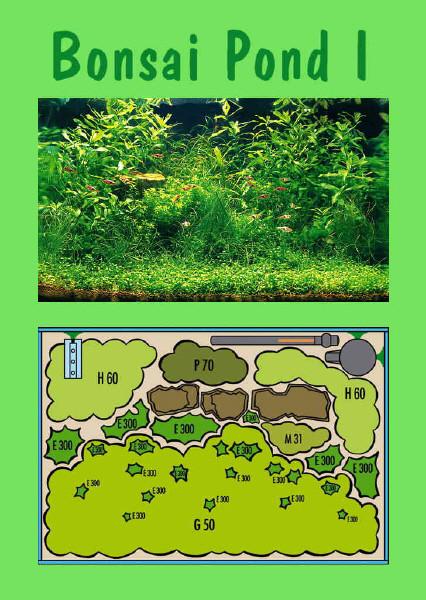 UW Bonsai Pond I