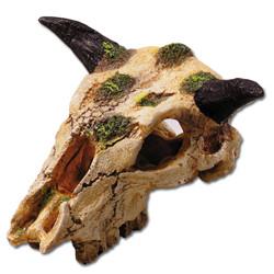Totenkopf Carabao Wasserbüffel Gr XS