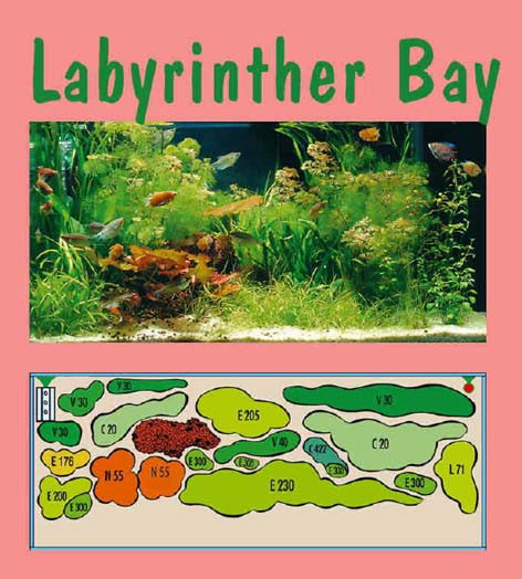 UW Labyrinther Bay