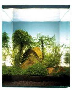 UW Nano Bamboo Cube