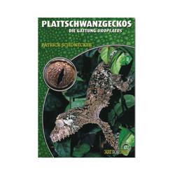 Plattschwanzgeckos