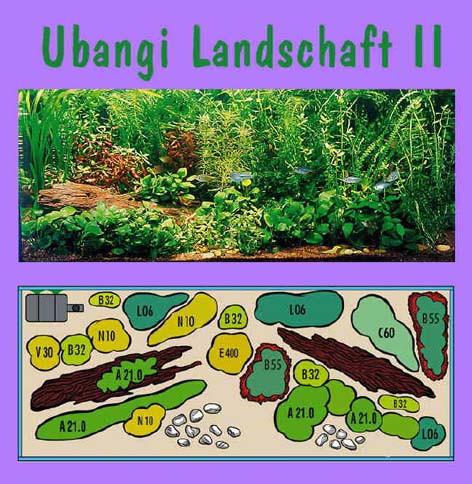 UW Ubangi II