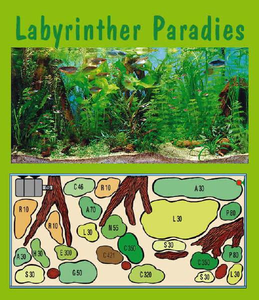 UW Labyrinther Paradies