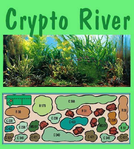 UW Crypto River