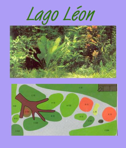 UW Lago Leon