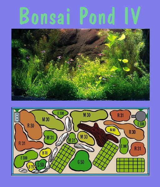UW Bonsai Pond IV