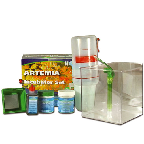 Artemia Brutset Incubator