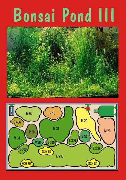 UW Bonsai Pond III