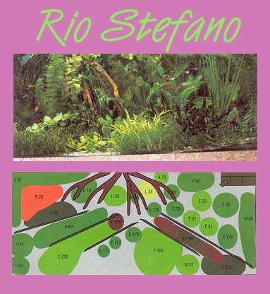 UW Rio Stefano