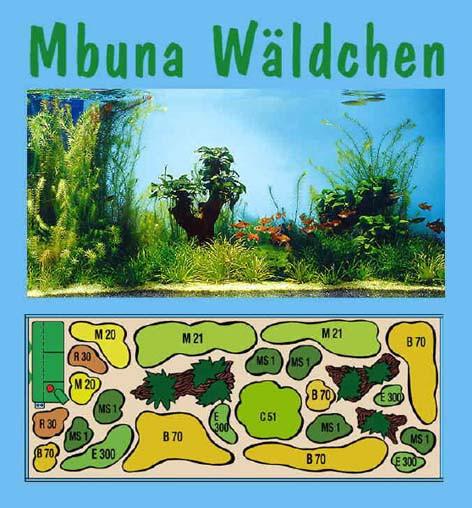 UW Mbuna Wäldchen