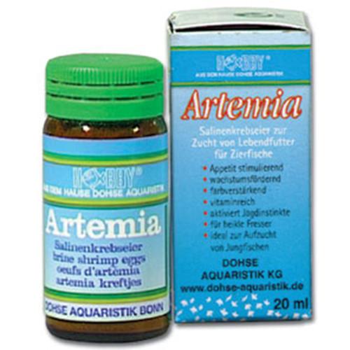20 ml Hobby Artemiaeier