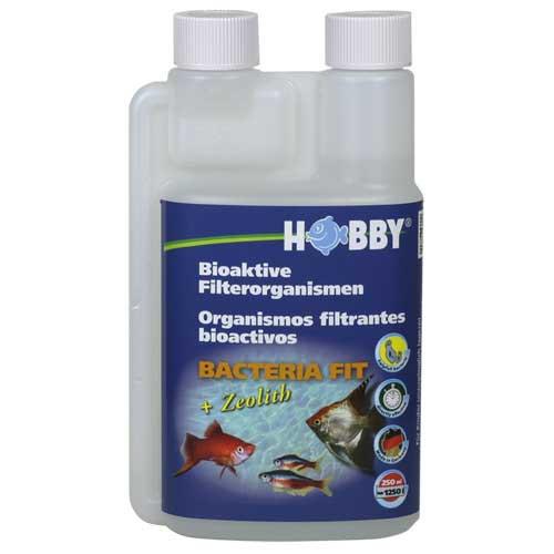 Bacteria Fit, 250 ml