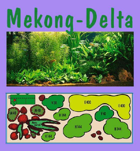 UW Mekong Delta
