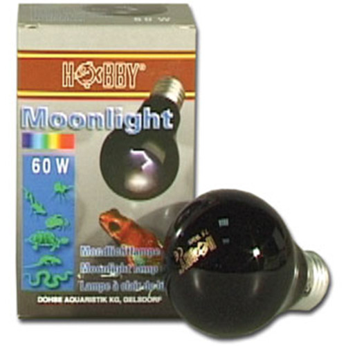 Hobby Moonlight, Mondlicht 60 Watt