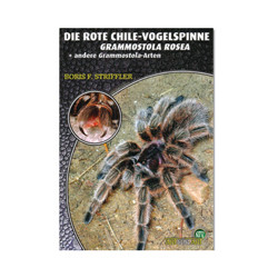 Rote Chile Vogelspinne