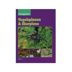 Vogelspinne & Skorpione