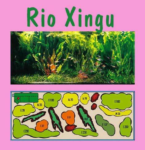 UW Rio Xingu