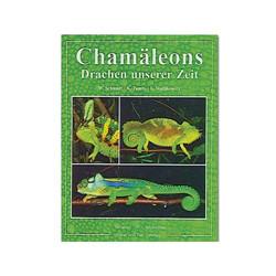 Chamäleons, Drachen unserer Zeit