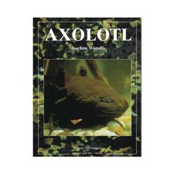 Axolotl NTV